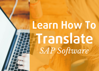 SAP Software Translation Course