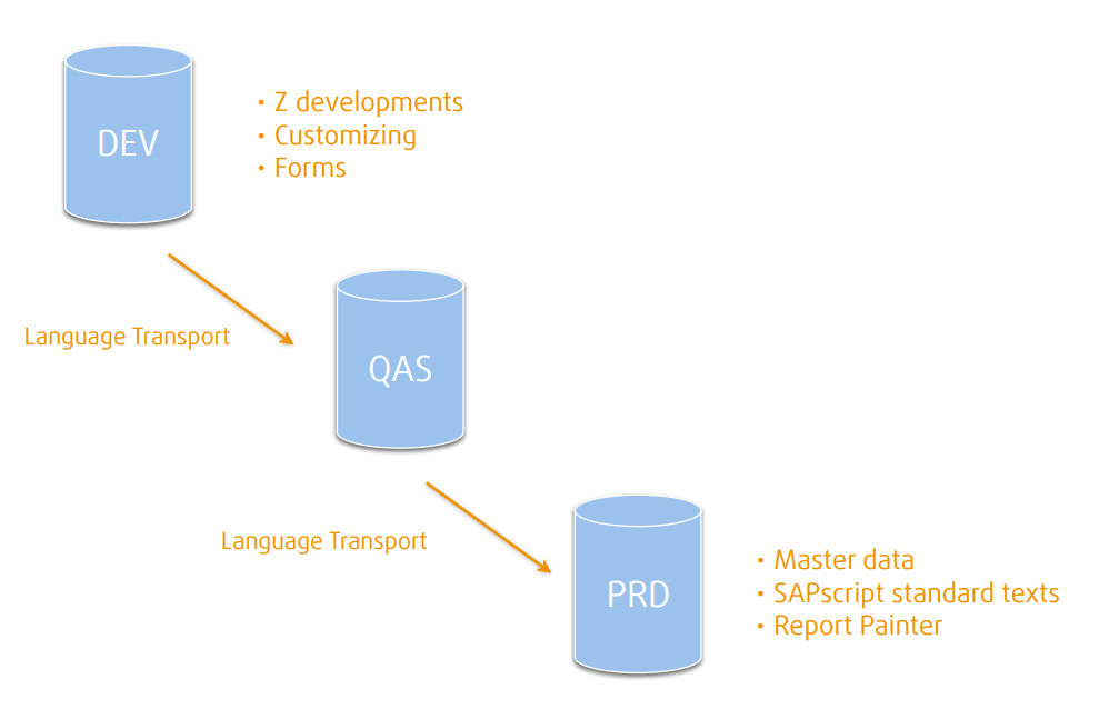 This is where the major types of texts are moste often translated SAP translation scoping